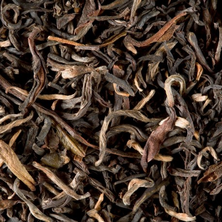 Five O'Clock Tea Bio