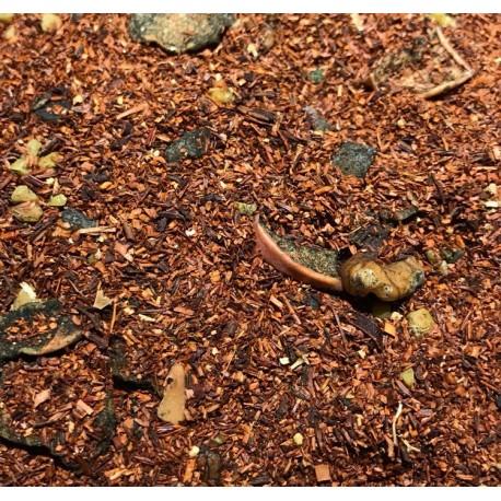 African Rooibos Fruity Nuts Bio
